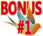 Bonus1b-Sara-Refuture-Shift-150